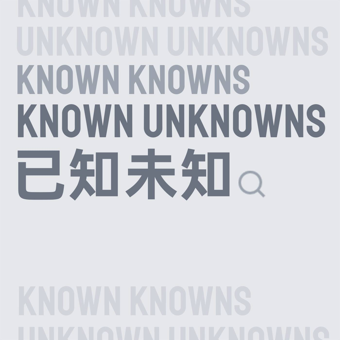 已知未知 Known Unknowns